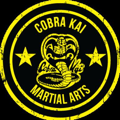 yellow-circle-martial-arts-logo.png