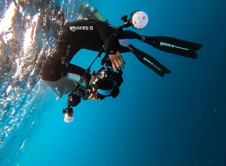 『技巧』還原海底景色的魔法-打燈技巧