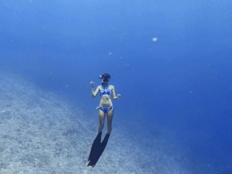 『自潛』選一雙適合自己的蛙鞋-自由潛水篇
