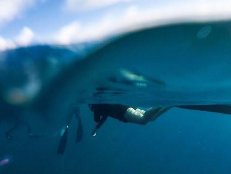 『自潛』自由潛水與我