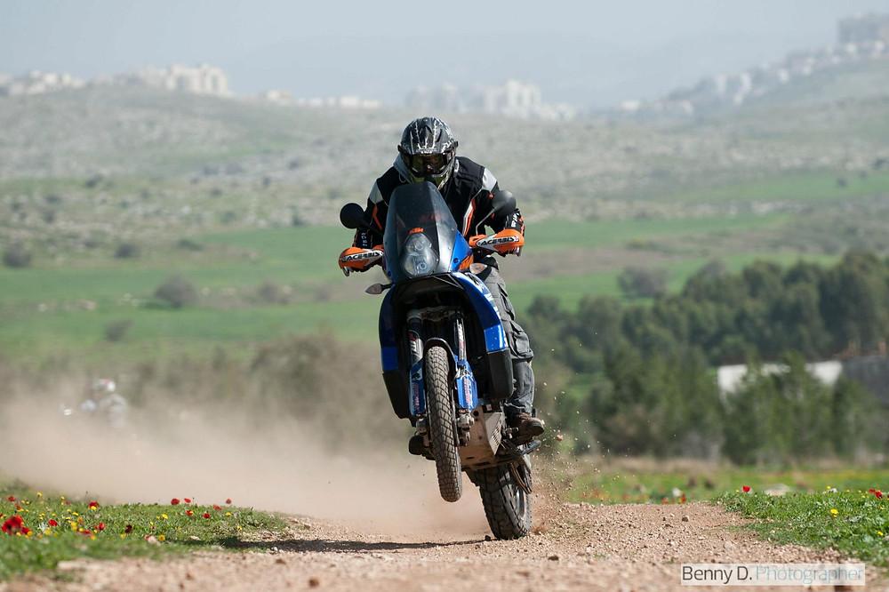 אופנועכחול על גלגל אחד חוצה שדה ירוק עם כלניות בשביל חום, ברקע גבעות מסולעות ומבנים בקצה האופק