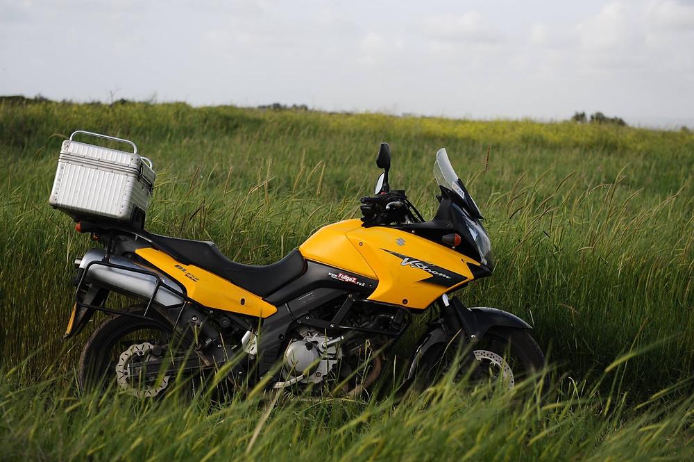 ויסטרום 650 צהוב עם ארגז בשדה חיטה ירוק