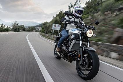 אופנוע על רקע כביש מרוח