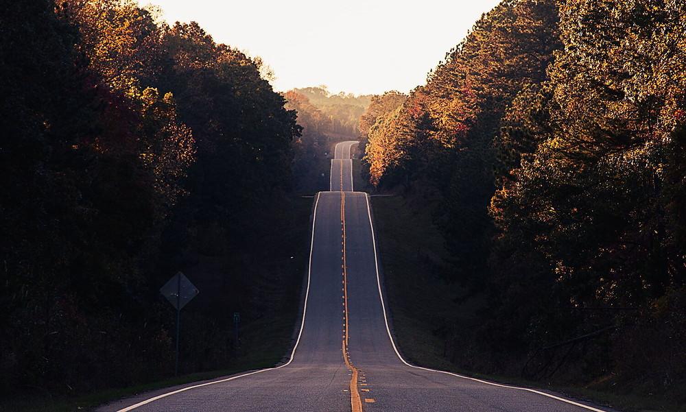 כביש ארוך וריק מלא בעליות וירידות, עצים בצידי הכביש