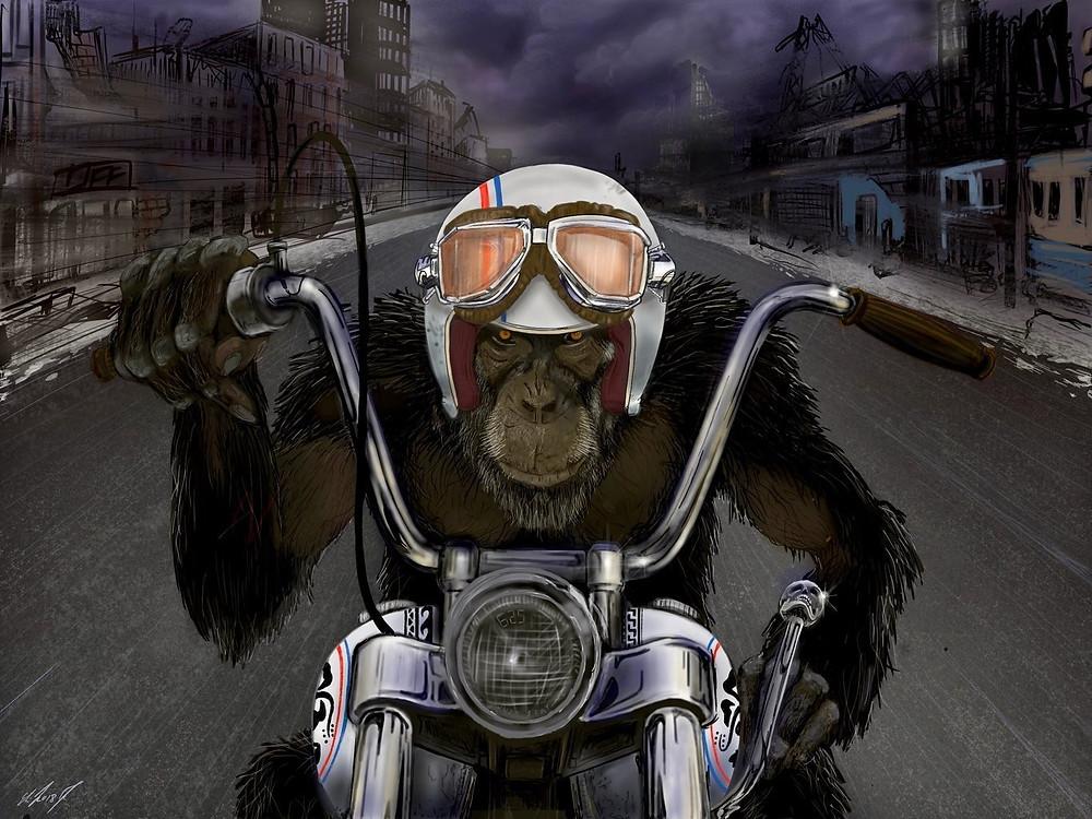ציור של קוף עם קסדה שרוכב על אופנוע בין ביניינים