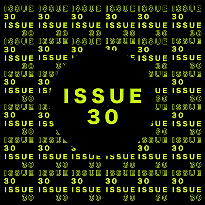 issue 30.png