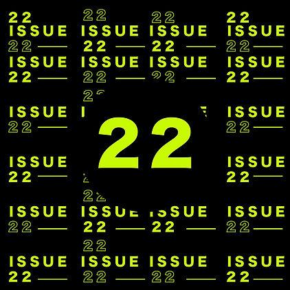 ISSUE 22-11.jpg