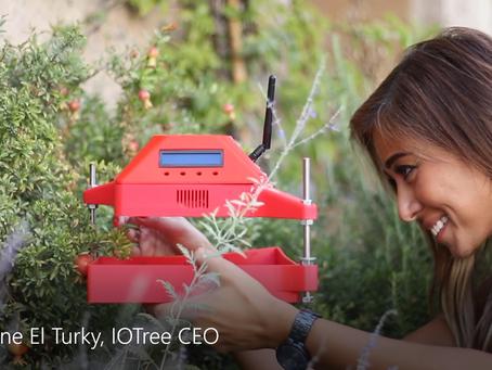NISRINE EL TURKY AND HER IOTree: A NEW IDEA OF ENTREPRENEURSHIP