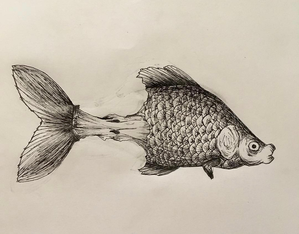 Emergent artist Federica Rossi's illustration