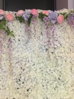 All white blossom flower wall