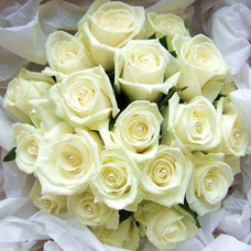all white rose bridal