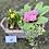 Thumbnail: Spring Planter