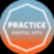 Practice Martial Arts Logo