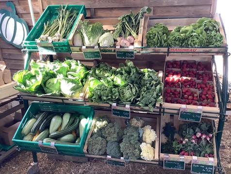 Présentoire de légumes dans notre boutique