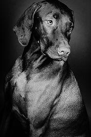 Jasper B_W