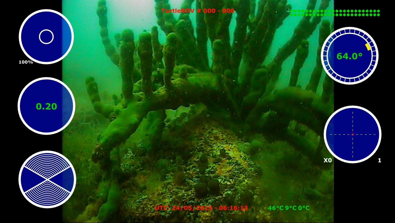 Screenshot from video_24_05_2019_06_13_2
