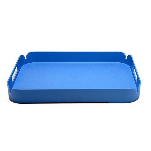 Blue Plastic Tray