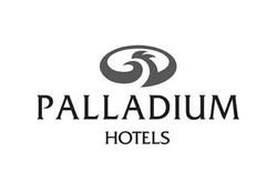 palladium logo BN