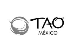 tao mexico logo BN