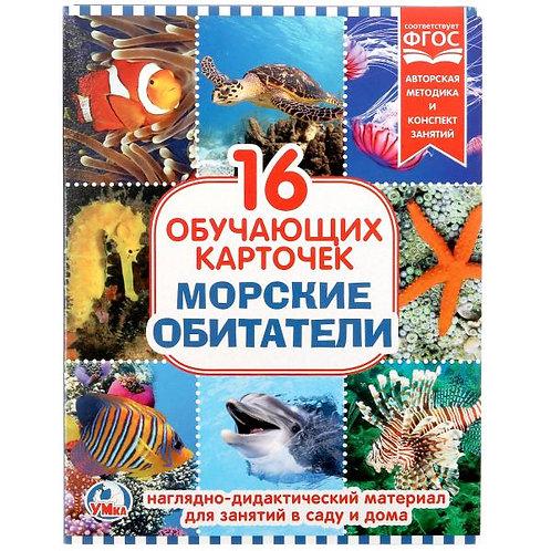 14-083-015 КАРТОЧКИ В ПАПКЕ. МОРСКИЕ ОБИТАТЕЛИ.16 КАРТОЧЕК