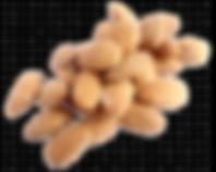 kisscc0-nut-almond-dried-fruit-screensho