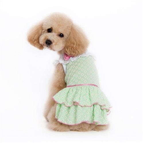 flowered summer dog dress