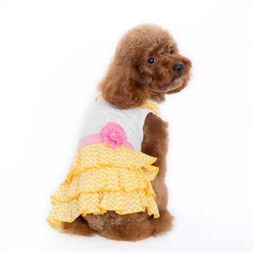 chevron summer dog dress