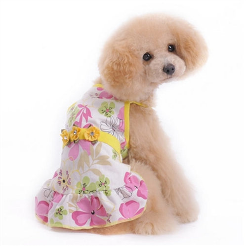 cute summer dog dress