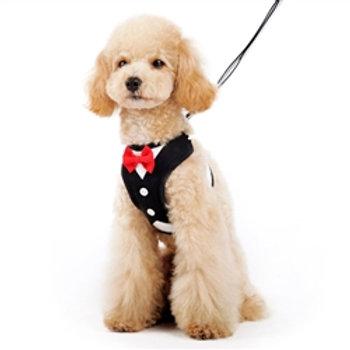 easygo black bowtie dog harness