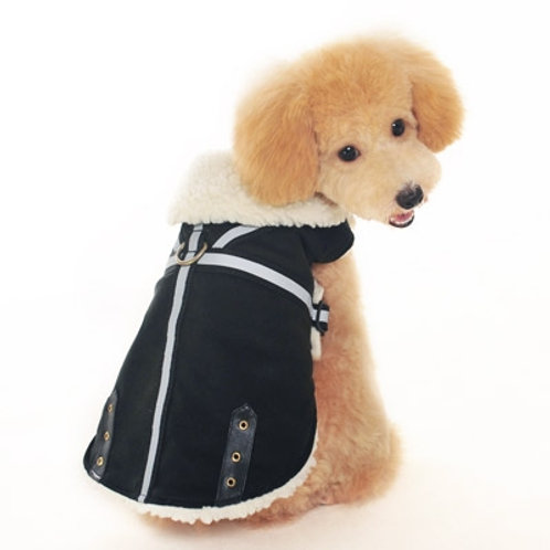 Winter Dog Coat and Harness