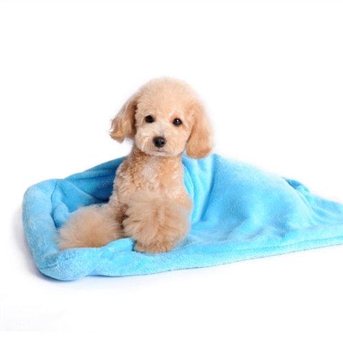 Blanket Bed