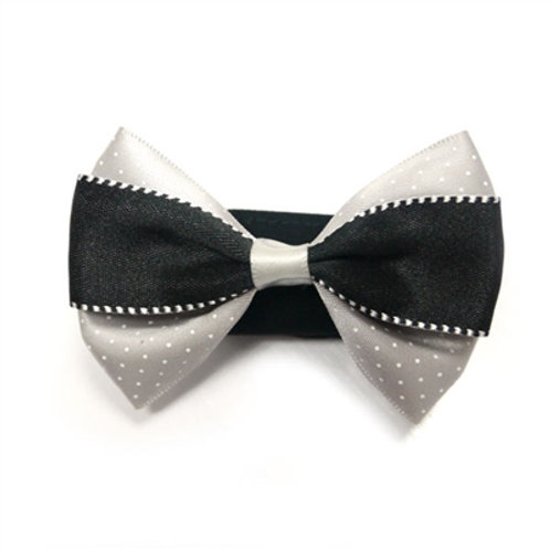 black dog bows