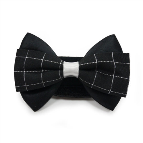 black dog bows