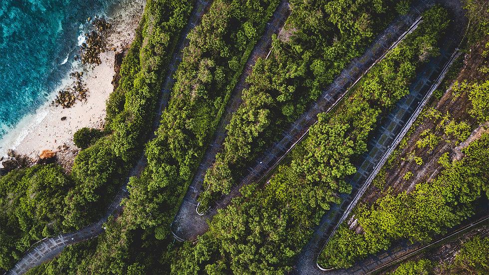 Roads_banner.jpg