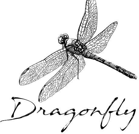 DragonflyLogo-favicon 3.jpg