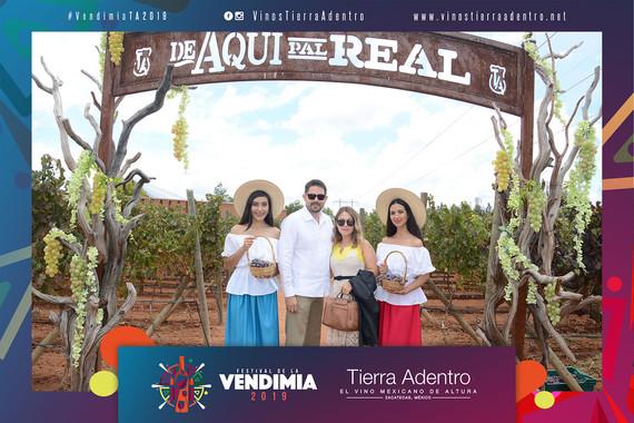 Vendimia 2019