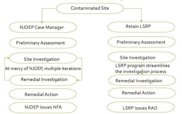 LSRP.jpg