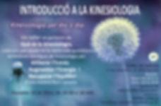 taller de kinesiologia OK.jpg