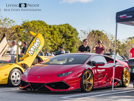 Mobile Video Gaming at Cars and Coffee Palm Beach