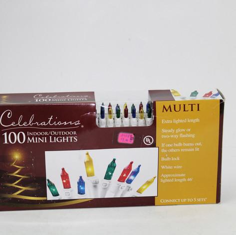 Celebrations 100 mini lights indoor / outdoor