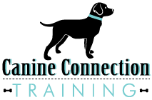 League City Dog Training