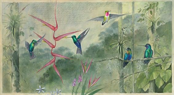 Five Hummingbirds, 2021