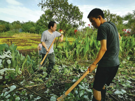 ICC's Hope Farm in Hengyang Provides Opportunity