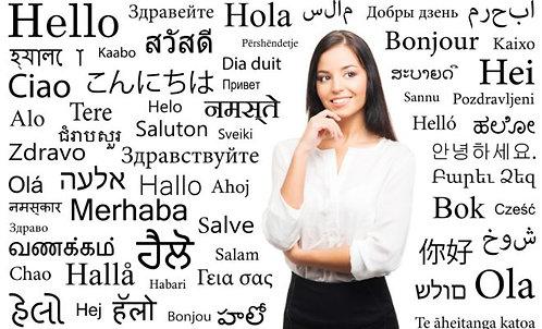 Translator Services - Per Hour