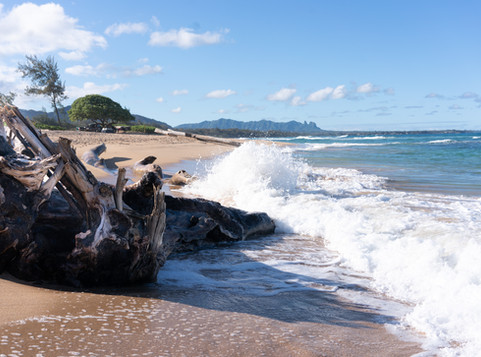 Destination - Kauai, Hawaii