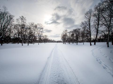 Spending time in Niseko and Rusutsu in Winter