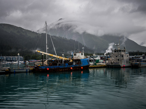 Aialik Bay, Alaska