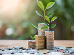 Top Penny Stocks To Invest in 2021