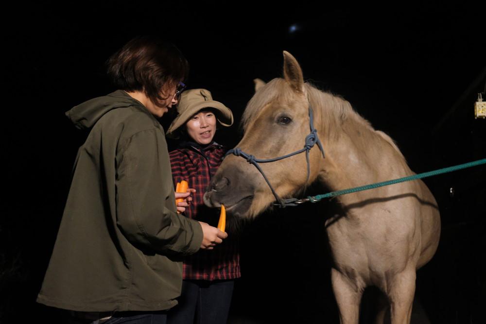 08馬へのお礼.jpg