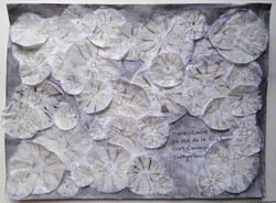 """No 5 """"paper to pack flower"""" 20/01/20"""